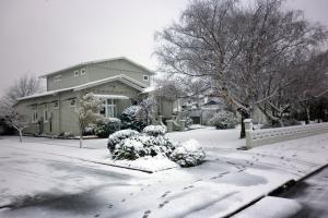 Snow in Carterton