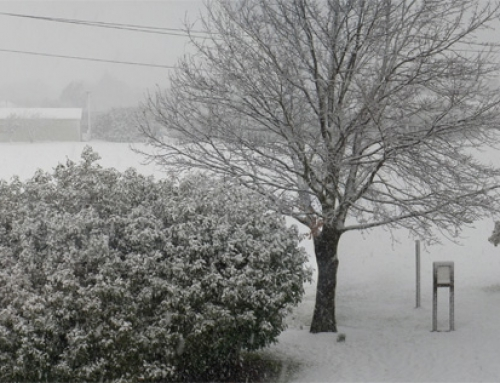A snowy Carterton