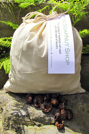 Soap nuts from the SoapNut Shop