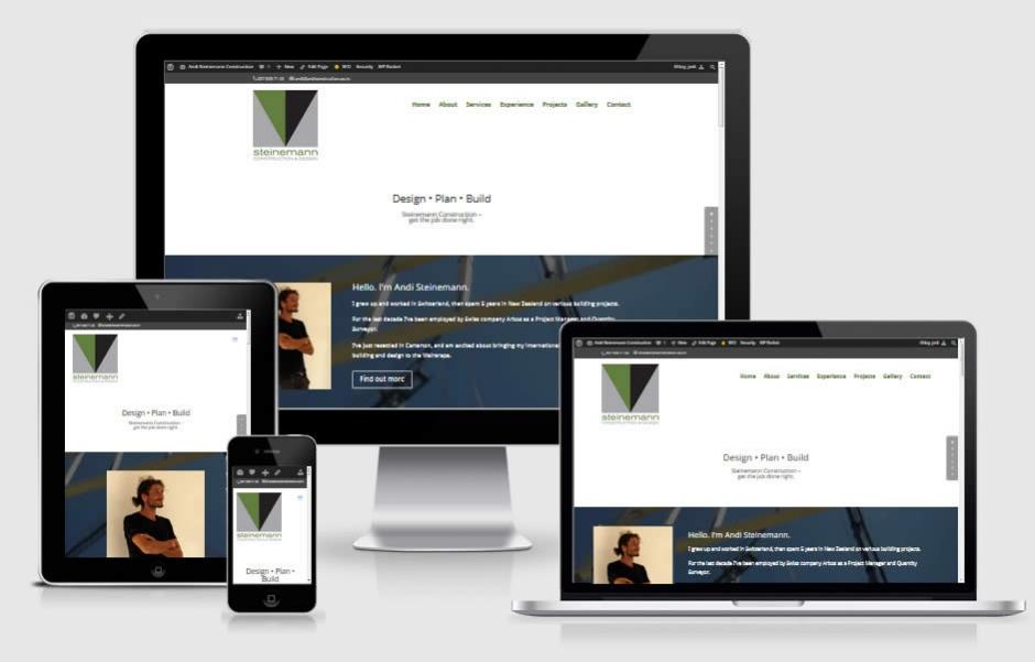 Andi Steinemann Construction Nectarine Website Portfolio Responsive