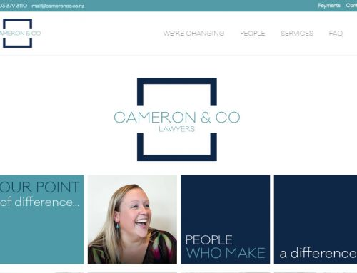 Cameron & Co website, logo and letterhead