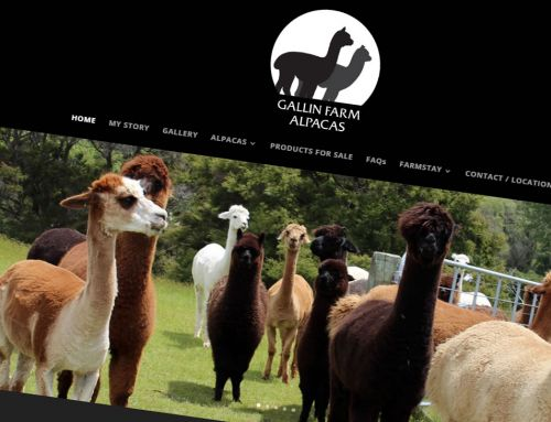 Gallin Farm Alpacas logo, business card and website