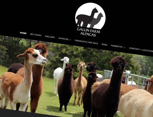Gallin Farm Alpacas logo, business card and website