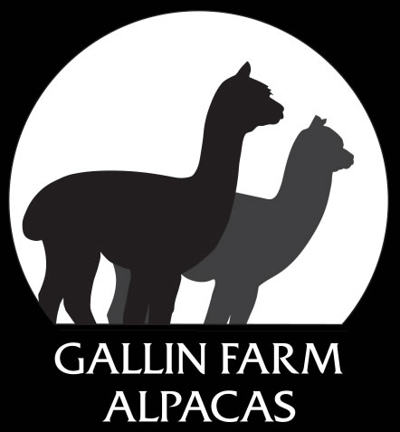 Gallin Farm Nectarine Portfolio Galinfarmalpacas Logo