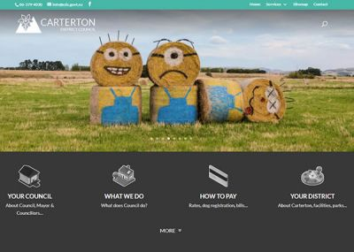 Carterton District Council Home Nectarine Website Portfolio F