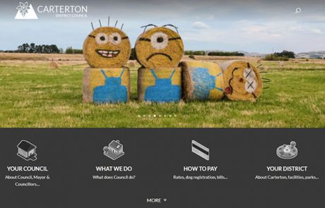 Carterton District Council Home Nectarine Website Portfolio F
