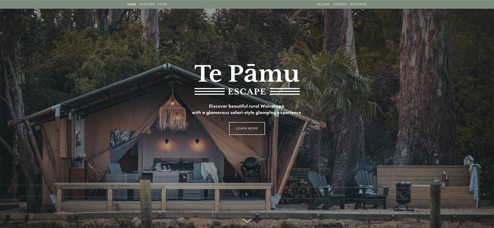 TePamu 1Homeage 1600