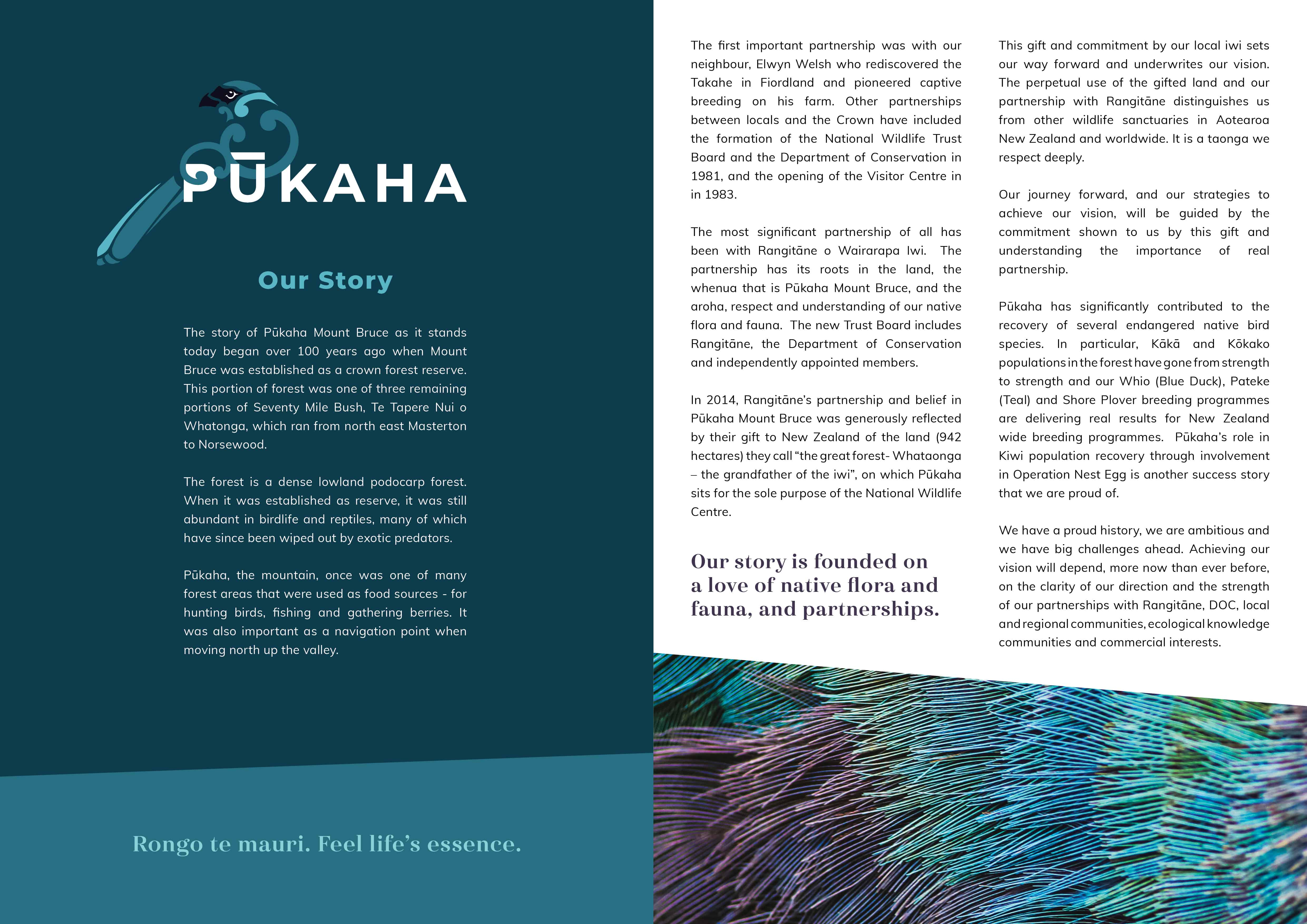 Pukaha Strategic Plan V7 Web2