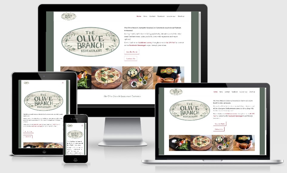 Olive Branch Website Promo